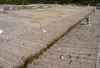 Asbestos cement roofs need not be a liability if properly treated